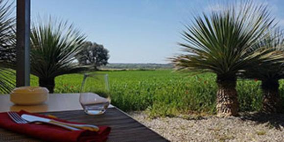 Restaurant L'Asparagus à Valros propose une cuisine traditionnelle faite maison traditionnelle à base de produits frais. (® facebook asparagus)